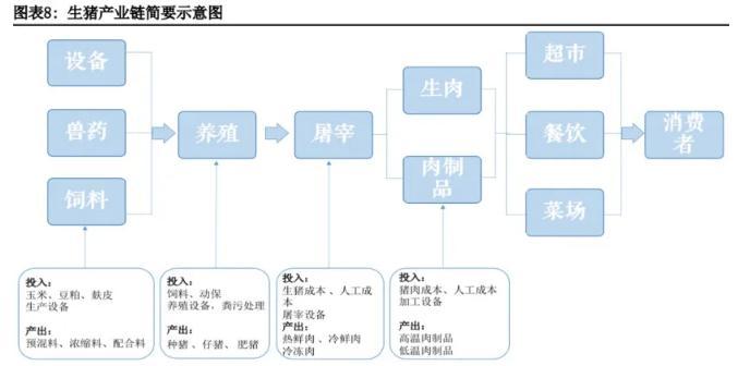 生猪期货基本面分析6.jpg